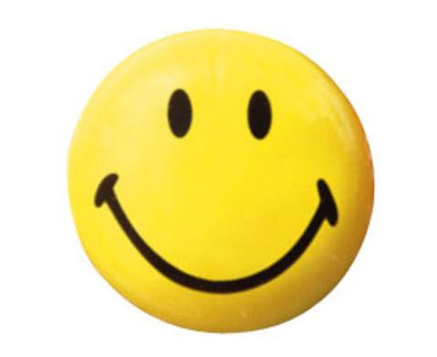 Smiley-Magnet 12 Stueck