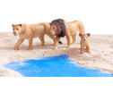 Afrikanische Tiere 18-tlg Set-4