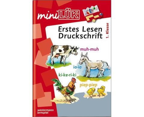 miniLUEK-Erstes Lesen Druckschrift 1 Klasse-1