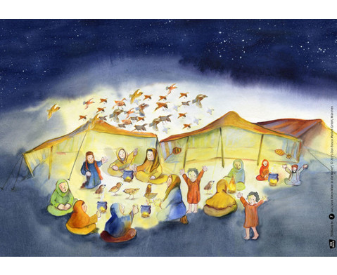 Bildkarten Vom Roten Meer in die Wueste-3
