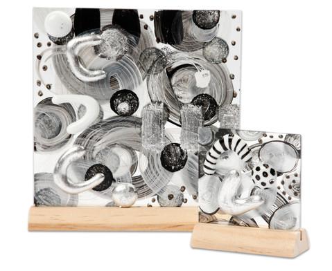 Glasplatten und Halter 10 Stueck-7