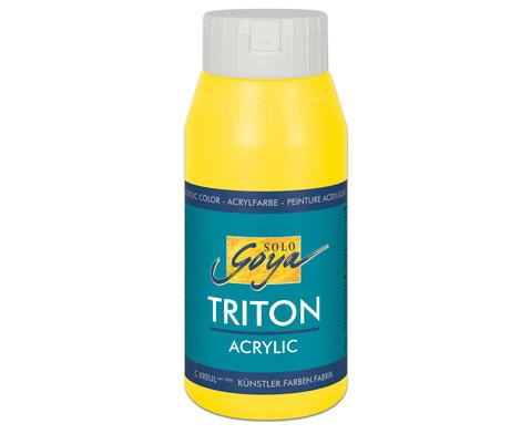 GOYA Triton Acryl 750ml-12