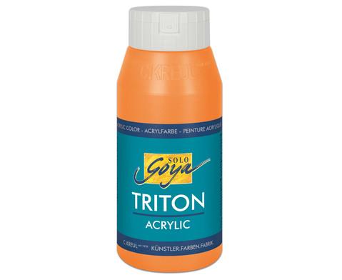 GOYA Triton Acryl 750ml-5