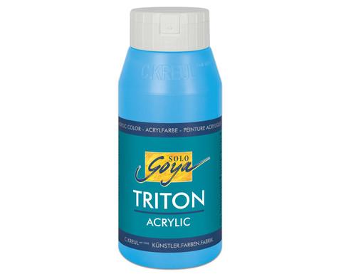 GOYA Triton Acryl 750ml-8