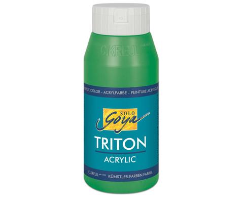 GOYA Triton Acryl 750ml-18