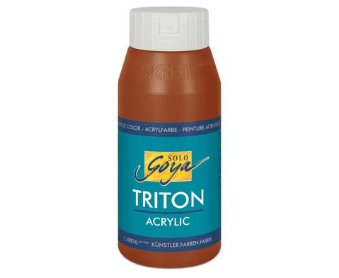 GOYA Triton Acryl 750ml-9