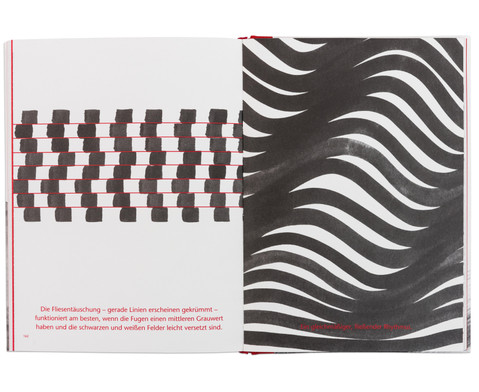 Buch Bewegung  Illusion auf Papier-3