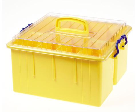 Sortierbox  mit Deckel und Griff-3