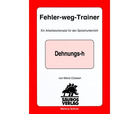 Fehler-weg-Trainer-3