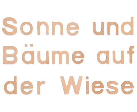 Holzbuchstaben 53 Stueck-1