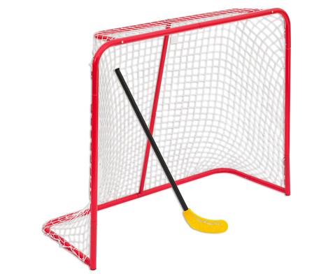 Grosses Hockey-Tor-4