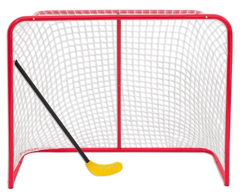 Grosses Hockey-Tor-5