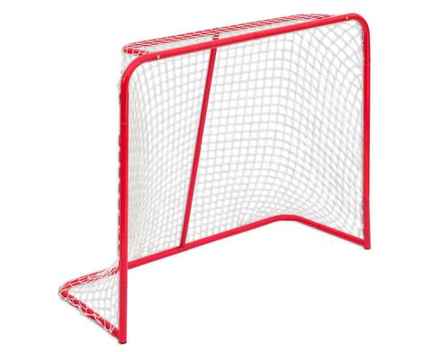 Grosses Hockey-Tor-6