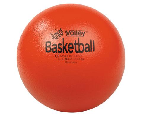 VOLLEY-Softball Junior Basketball