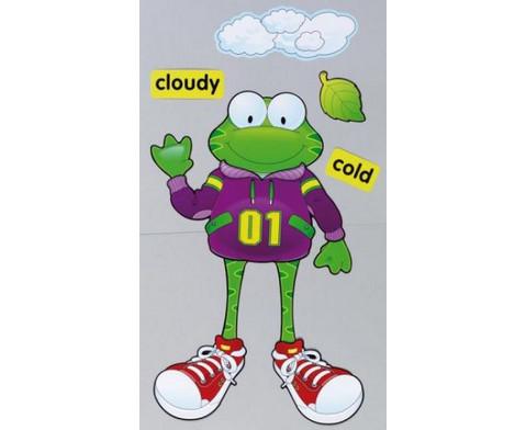 Weather Frog-3