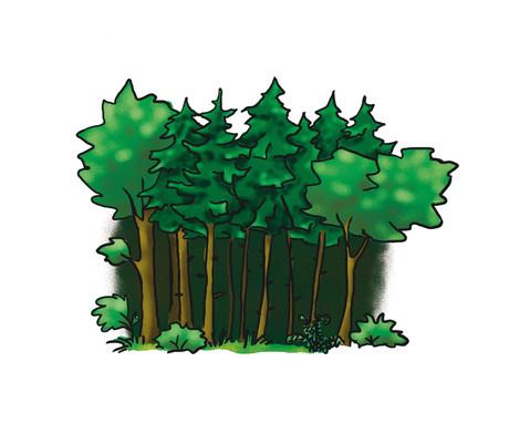 Vocabular Wortschatzbilder Tiere Pflanzen Natur-2