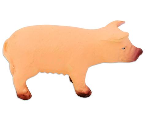 Schwein Naturkautschuk