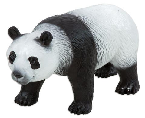 Pandabaer Naturkautschuk