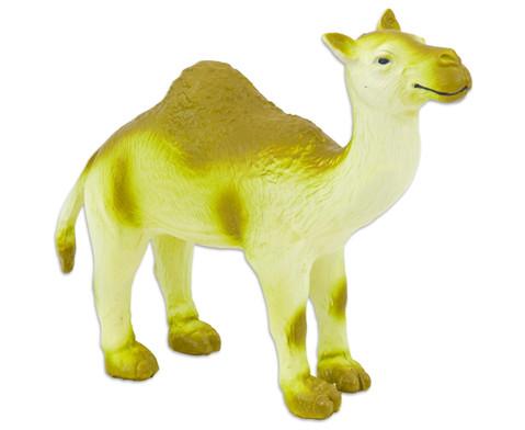 Kamel Naturkautschuk-1