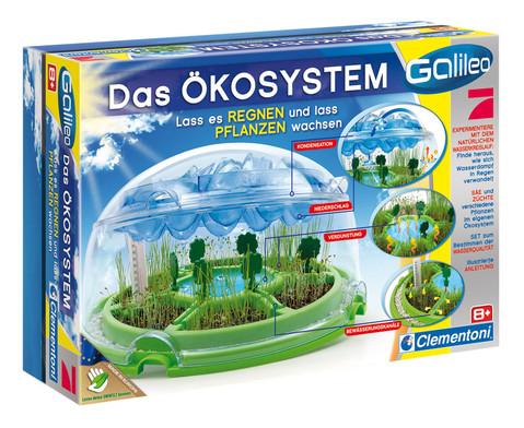 Das OEkosystem-1
