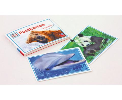 Was ist Was Tierpostkarten 16-tlg-2