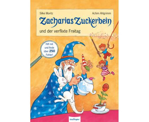 Zacharias Zuckerbein 1000 Fehlersuchspassbuch-4