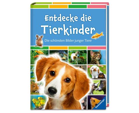 Entdecke die Tierkinder- Die schoensten Bilder junger Tiere-1