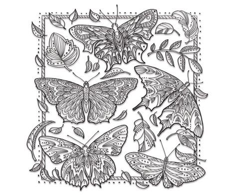 Zencolor - Voegel und Schmetterlinge-2