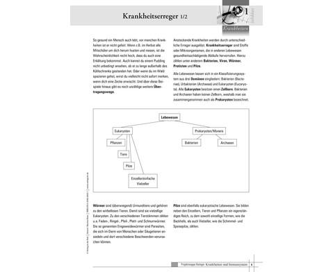 Projektmappe Krankheiten und Immunsystem-4