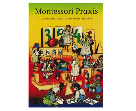Montessori Praxis-1
