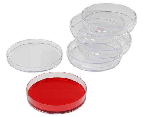 Petrischalen aus Kunststoff 5 Stueck-1