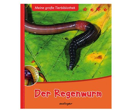 Meine grosse Tierbibliothek - Der Regenwurm-1