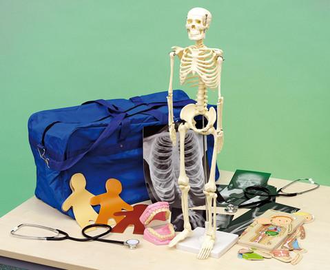 Menschlicher Koerper Lern-Set-1