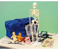 Menschlicher Körper Lern-Set