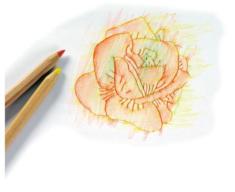 Rubbel-Platten Blumen  16-tlg Set-2