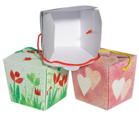 Blanko-Boxen 24 Stueck-1
