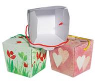 Blanko-Boxen, 24 Stück