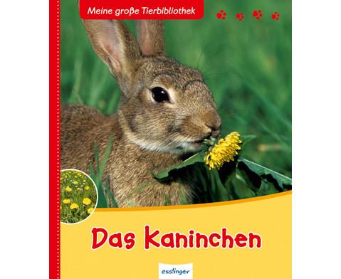 Meine grosse Tierbibliothek - Das Kaninchen-1