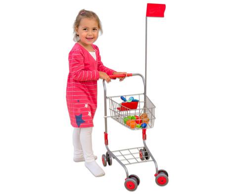 Einkaufswagen fuer den Kaufladen-3