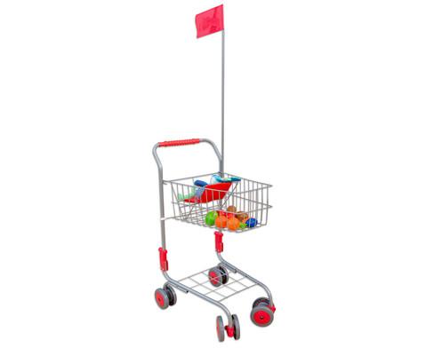 Einkaufswagen fuer den Kaufladen-5