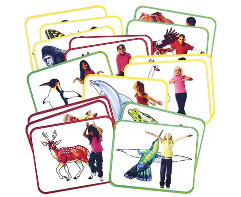 Yoga-Karten Tiere 16 Stueck-1