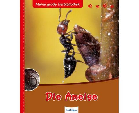Die Ameise-1