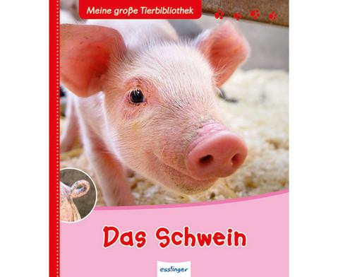 Meine grosse Tierbibliothek - Das Schwein-1