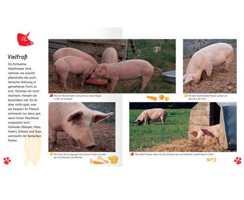 Meine grosse Tierbibliothek - Das Schwein-2