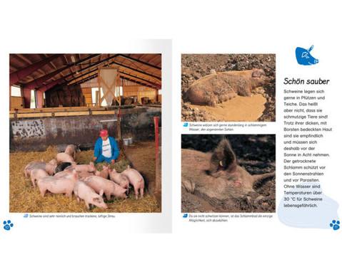 Meine grosse Tierbibliothek - Das Schwein-3