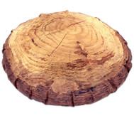 Forest Sitzsack Baumscheibe