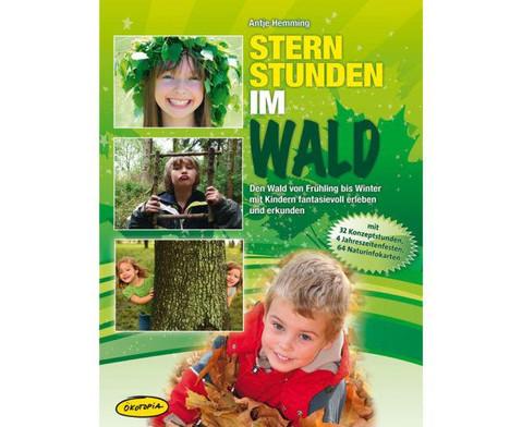 Ordner Sternstunden im Wald-1