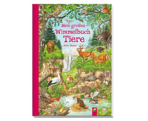 Die grosse Anne Suess Wimmelbox-2
