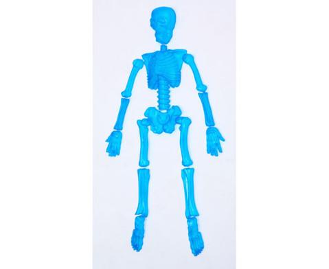 spiel skelett