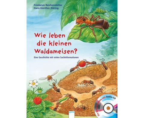 BuchCD Wie leben die kleinen Waldameisen-1